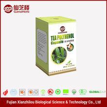 Liver Protection direct manufacturer supply natural tea polyphenol
