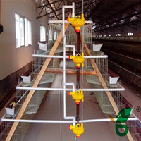 Chicken use galvanized battery poultry layer cage systems