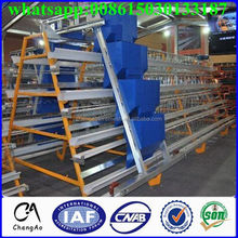 H type cheap price bird layer cage for laying hens