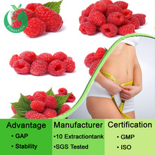 Pure Raspberry extract ketones 10%- 99%/raspberry extract