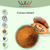 Natural free sample 40% polyphenols Cocoa extract,factory supply 10% alkalized cocoa powder theobromine