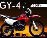 2013 Dirt Bike ZF250GY-4