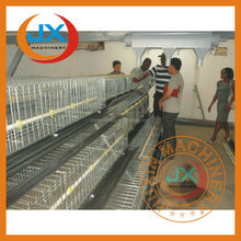 Automatic poultry farm bird cages for sale cheap