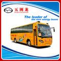 9.9 metros Autobús Escolar