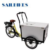 motorized ice cream cargo tricycle