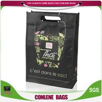 Special Designed Laminated Non-Woven Gift Bag