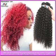Wholesale supply Best Feekback virgin Brazilian afro curly hair