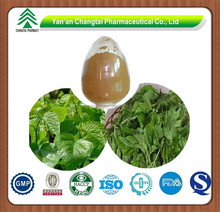 Natural Chinese Herb Resource Mulberry Leaf Extract Flavonoids 20%