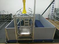 piggery supply feeding equipment pig farrowing crate wtih warm box fencing