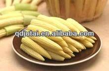 canned baby corn/ canned vegetable 2014 new product company