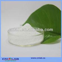 Hot selling stevia sugar price hot sale
