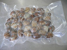 IQF frozen whole bag boiling delicious seafood vacuum clam