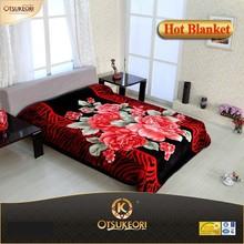 New design and good qualtiy hot sale 1 ply korean style raschel mink blanket