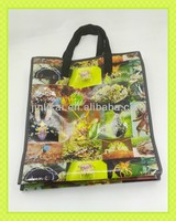PP woven moving tote handlebag