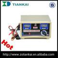 12v 15a de plomo ácido de la batería cargadores