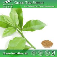Organic Green Tea Extract Bulk Price 20% 50% 98% Polyphenols 5% 65% Catechins 10% 40% EGCG
