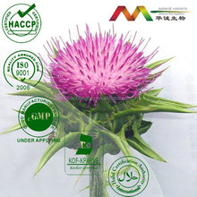Liver Tonic Milk Thistle Seed Extract