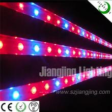 New LED product 660nm 460nm DC12V IP68 waterpoof full spectrum led grow lights for plants, greenhouse