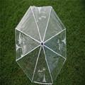 透明な透明なドームodm傘のギフトボックス