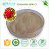 Bulk sale schisandra extract powder in factory price