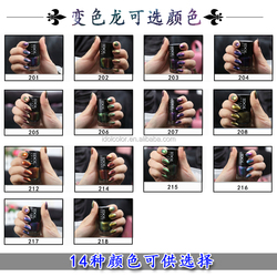 Pop Color Nail Pigments, Color Shifting Nail Powders, Chameleon Pigment Nail Polish Manufacturer