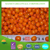 frozen sea buckthorn berries with competitive price