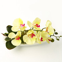 high-end wedding decoration 1pcs 2color artificial orchid flowers false water potted decoration free shipping silk flower