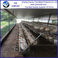 alibaba china market Chinese chicken coop types of layer chicken cages for zimbabwe poultry