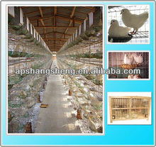 Anping parrot cage / PVC coated animal cage