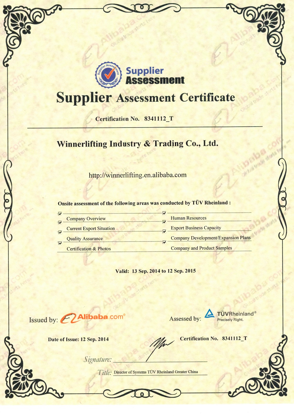 Assessment Certificate from Alibaba.jpg