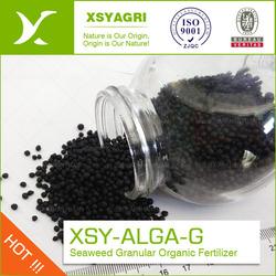 Seaweed granular fertilizer, organic seaweed granular fertilizer compound with NPK 16-0-1