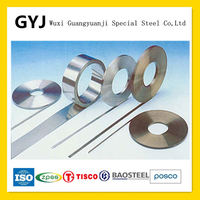 Stainless Steel Decorative Strip