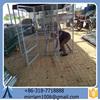 Characteristic Baochuan hot sale new design fashionable pet house/dog/pet cage/runs/carriers