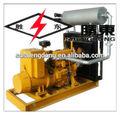 Cogeneración 80kw generador de biogás sd-80