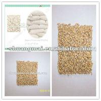 barley malt,price of barley malt,corn malt