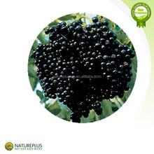 High quality Saw Palmetto Fruit Extract(25%,45% Fatty acids)