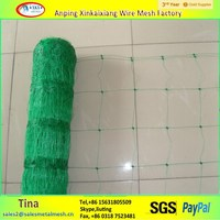 China supply hdpe Vegetables/flowers plant support netting