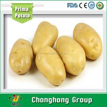 [HOT] 2015 fresh potato for sale
