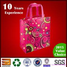 Translucence Lowest price key case holder bag