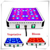 200W new product hydroponic container led grow light bulb