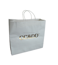 well design luxury Shopping paper Bag with your own logo printed