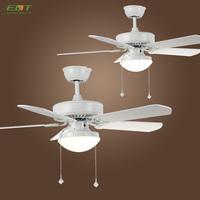 Fancy Designer Decorative Lighting Ceiling Fan