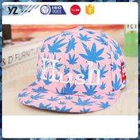 Custom embroidery cotton 6 panel hat flat brim snapback cap