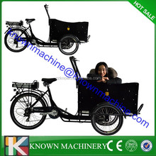 2015 hot sale CE certification3 wheel electric cargo bike/ cargo tricycle / cargo trike front box