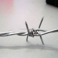 professional coiled cheap razor barbed wire from manufactory