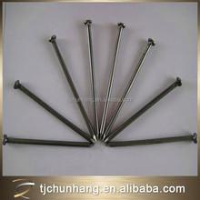 Very Useful Iron Nail made in tianjin china