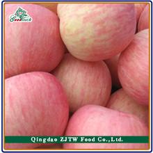 100-125 size apple fruit 20kg box fuji apple