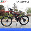 rear suspension electric bike battery price,lithium battery for electric bike