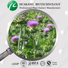 Natural Milk Thistle Extract Pure