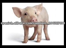 veterinaria medicina/ 10%apramicina polvo soluble de sulfato/ antibiótico